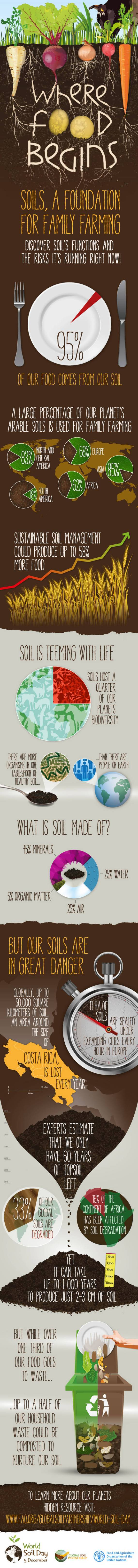 World Soil Day Infographic