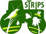 STRIPS logo large
