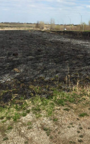 Fully burned prairie