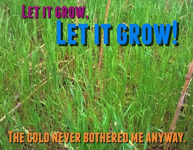 LetItGrow