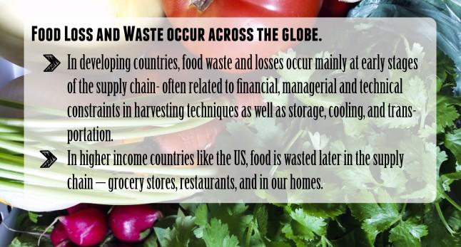 FoodWaste-03