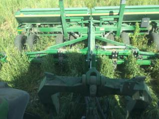 Drilled soybeans into cereal rye