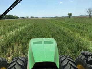 Planting soybeans into green cereal rye cover