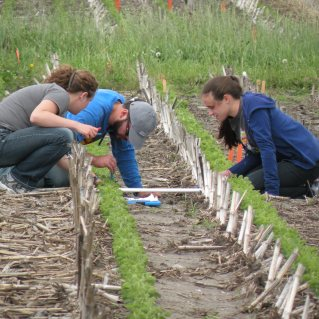 ILF interns counting earthworm middens at a project site