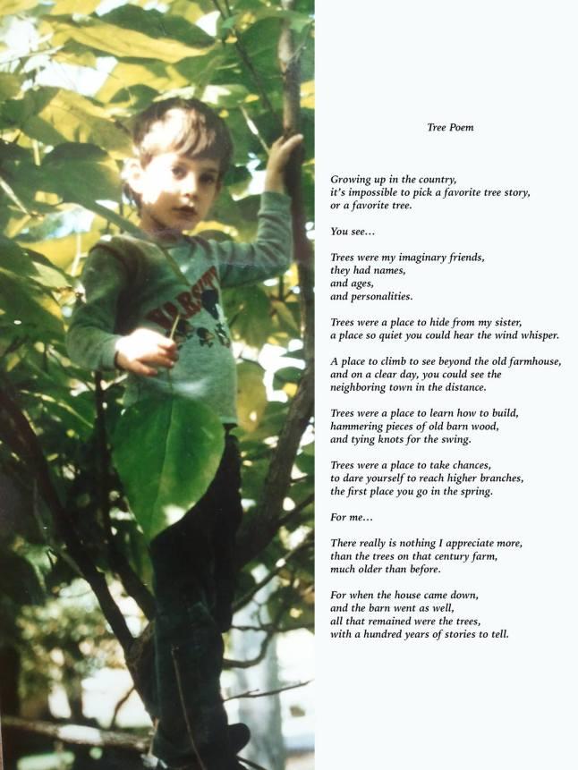 nate tree story