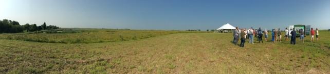 field day 6
